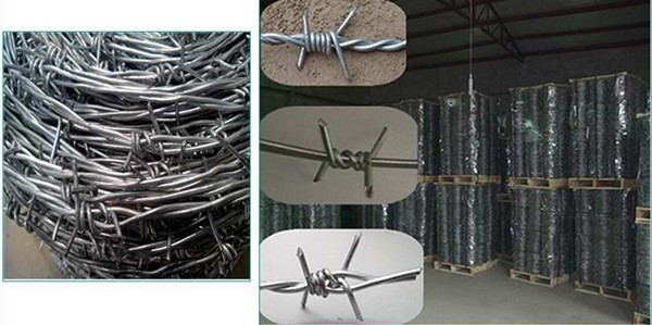 Innaer Barbed Wire For Defend 20 Yearsquality Guarantee