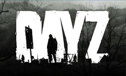 Пара игры PC DayZ независимый версия