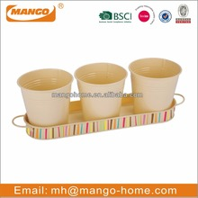 3pcs set metal mini flower pot