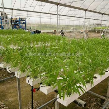 Nft Selokan Sistem Hidroponik Rumah Kaca Pertanian Industri Buy Nft Gully Rumah Kaca Pertanian Industri Sistem Hidroponik Product On Alibaba Com