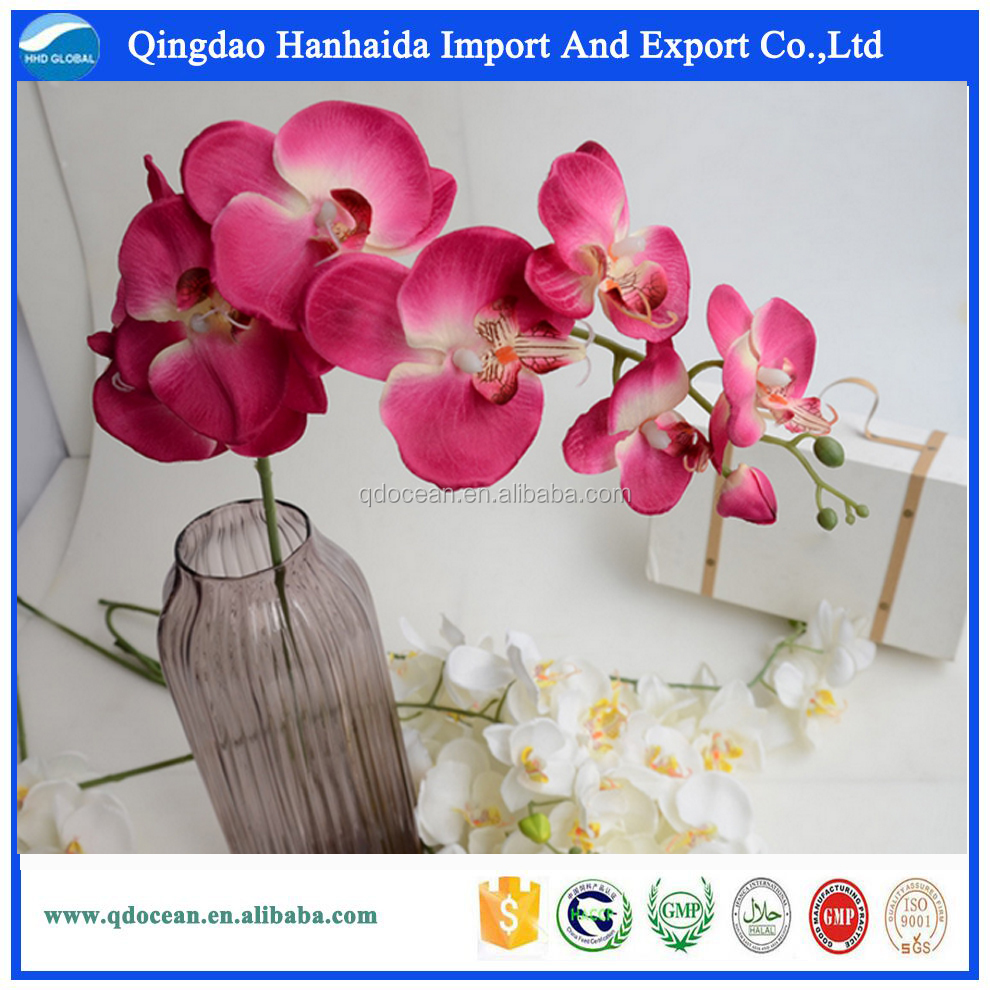 Ocean Flowers Ocean Flowers Suppliers And Manufacturers At Alibaba