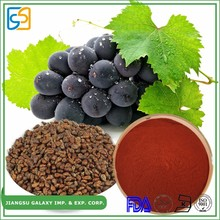 ISO certificate manufacture grape seed extract / polyphenols