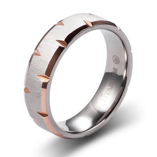 R1164 IPR 6mm Width Brushed Bands/Rings in Titanium with Knife Cut Edge