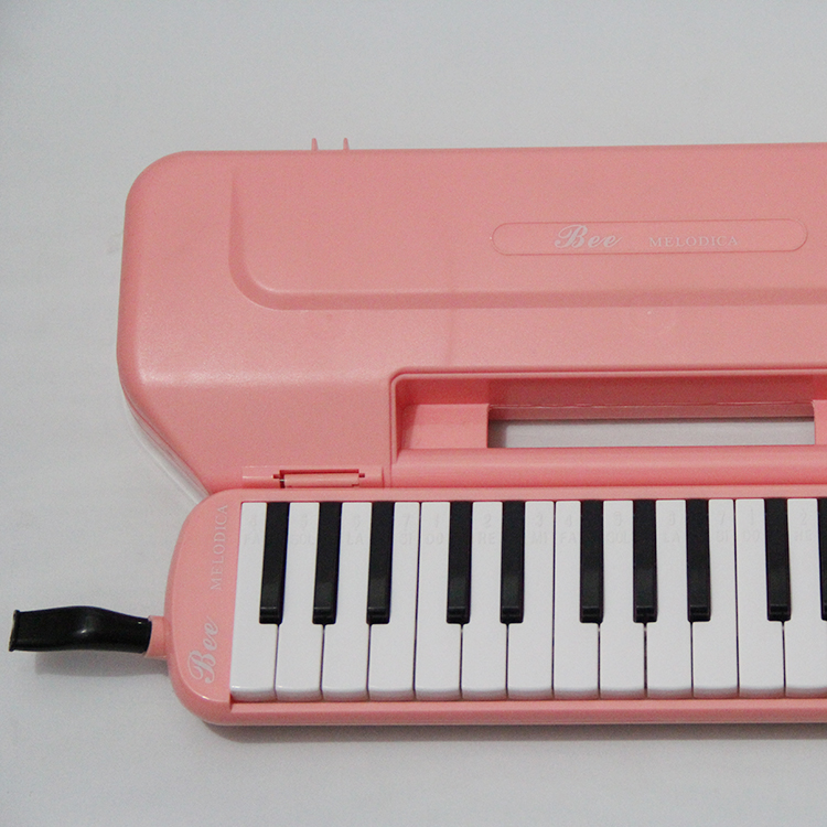 Quality practice melodica with cheap price