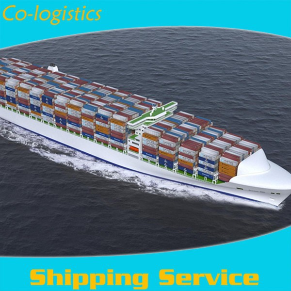Excellent sea freight agency from China--Mina