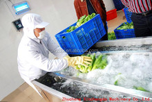 Air Bubble/Spraying Type Water Saving Leafy Vegetable Washer