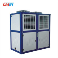 Air cooled Bitzer cold room condenser unit for freezer storage