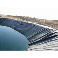 BLOWN FILM SECTOR GEOMEMBRANE