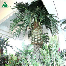 wholesale high quality fake foxtail palm tree trunks decorations
