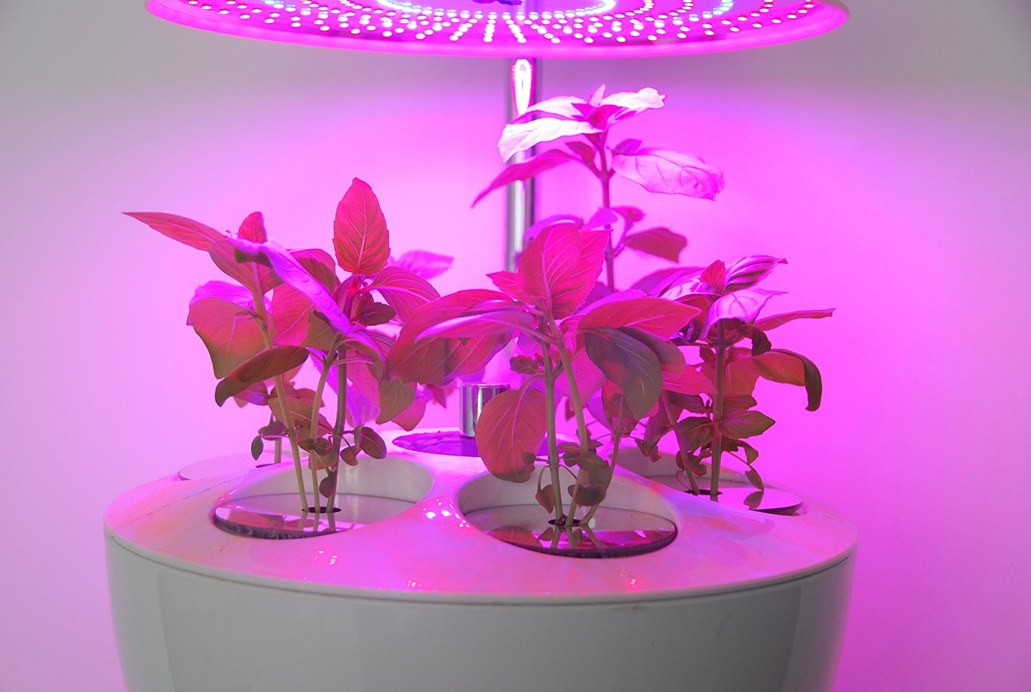 Cheap Fully Automated Grow System, find Fully Automated Grow