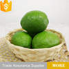 wholesale fresh fruit Lime and lemons price