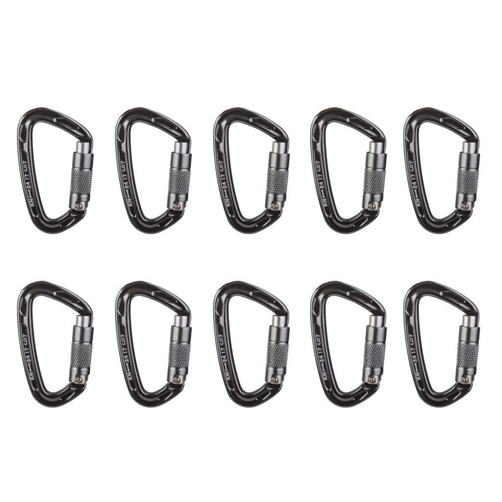 Jili Online 10 Pieces D Shape Aluminum Auto Locking Carabiner