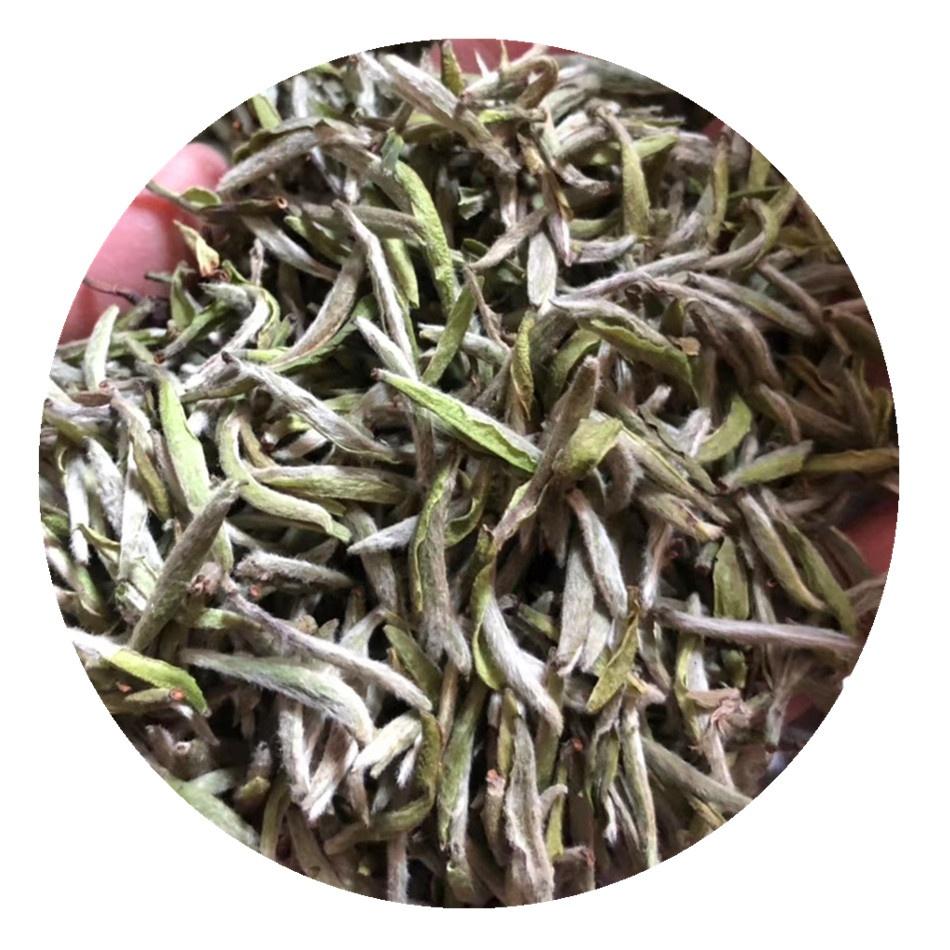 2019 Fresh New Early Spring Full Pekoe Silver Needle White Tea Bai Hao Yin Zhen - 4uTea | 4uTea.com