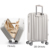 Hard shell universal pulley suitcase luggage boarding case