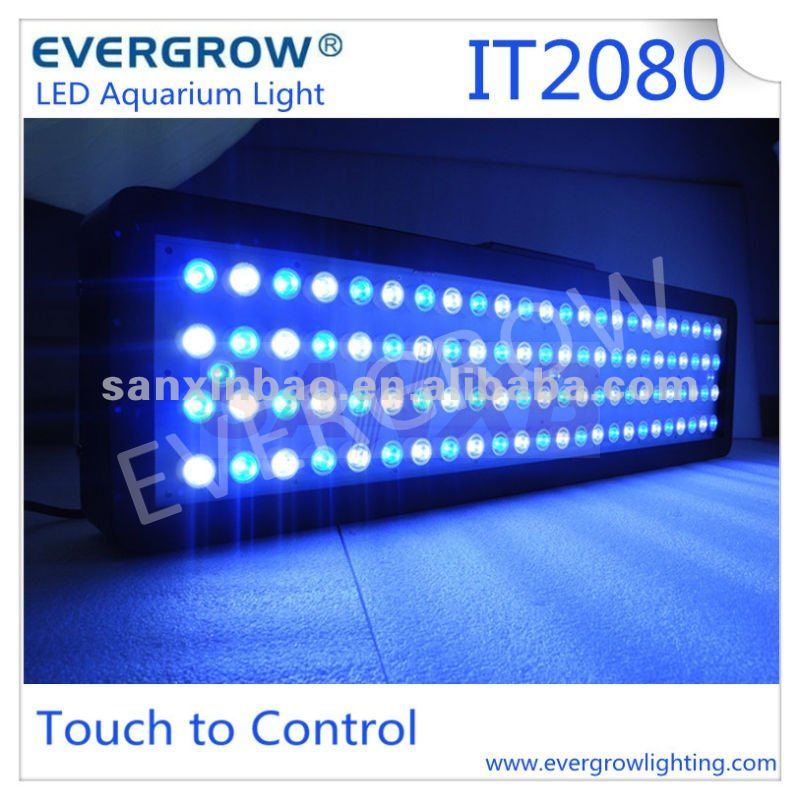 Evergrow IT2080 auto dimmable for Jellyfish aquarium tank led aquarium light