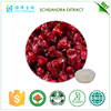Botanical extracts for health products schisandra extract exporter