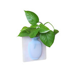 COOLNICE Decoration Unbreakable Movable Flat Transparent Hanging Plastic High Quality Silicone Wall Vase for Plants