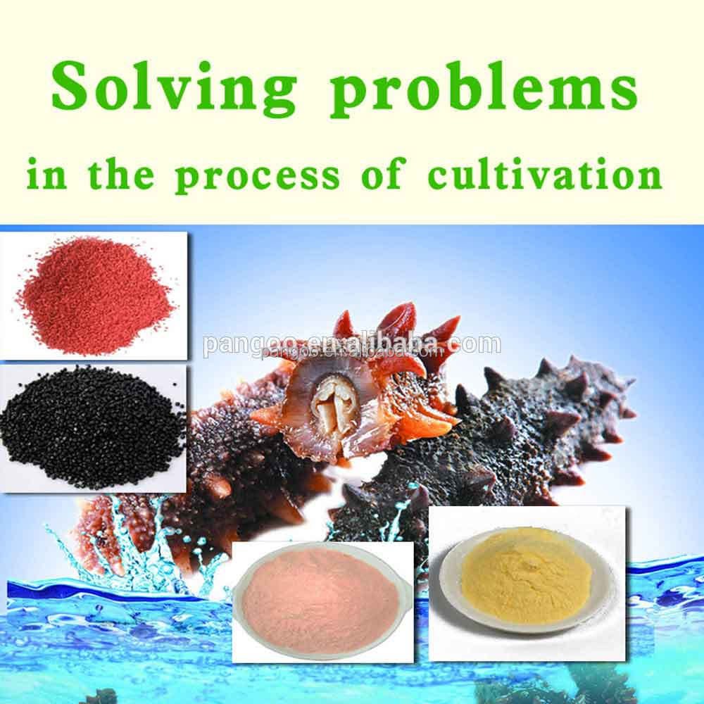 Aqua-trepang Pangoo,Microbial Feed Addtives,Promoting Growth And ...