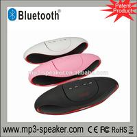 MPS-010 High Quality SD/USB/FM portable mini speaker with fm radio usb input