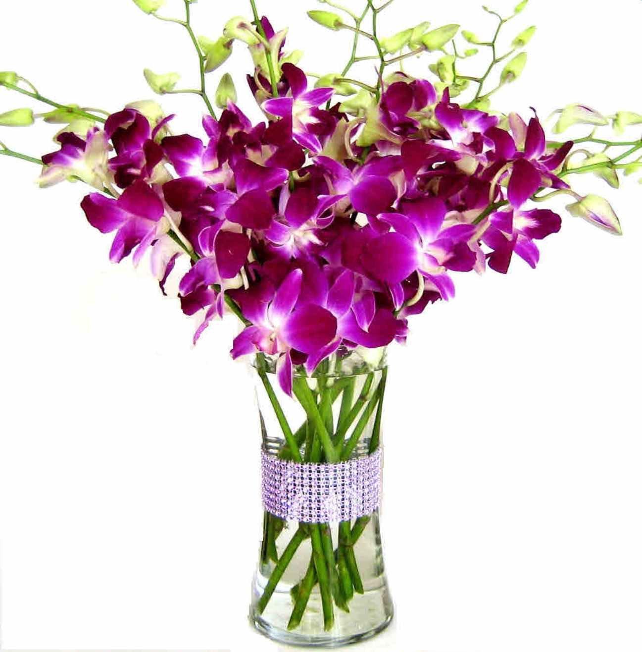 Купить букет орхидей дендробиум розовый 51 шт, екатеринбург доставка ромашки