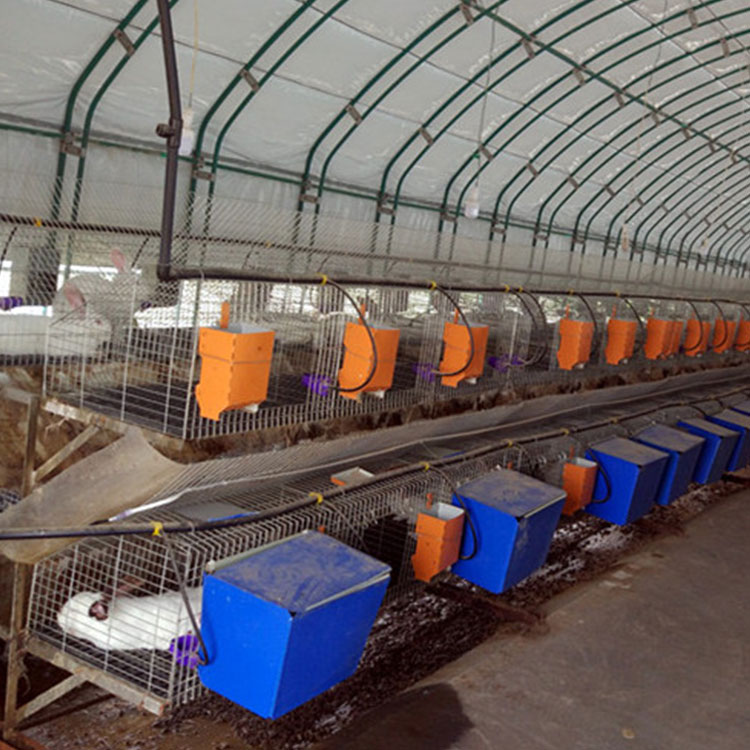 china offer 12 cells commercial rabbit capacity cages for industrial rabbit farm