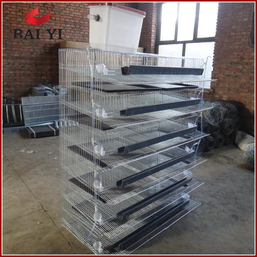 List Manufacturers of Quails Cages Commercial, Buy Quails ...