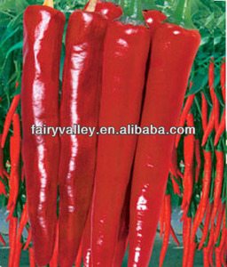 California 609-Super Hot Red Pepper Seeds Chili Seeds For Sale Special Variety For Dry Chilis
