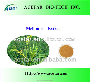 Melilotus officinalis (Sweet clover) extract in stock 2%-5% Coumarin