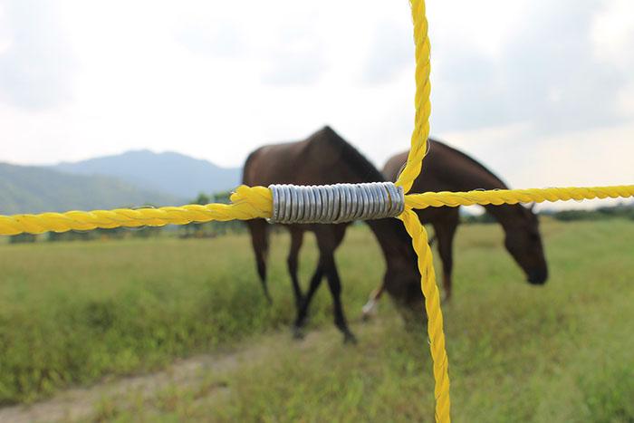 5J Электрический забор Energizer для слон электрическое ограждение зарядное IMG_1739