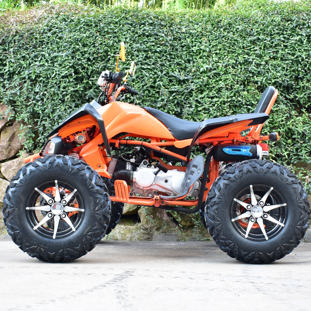 Manual Transmission Type And Gas Diesel Fuel Quad Atv Manual Guide