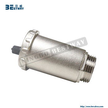 BWVA Welcome OEM ODM new type automatic air vent