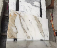 Polished or honed Calcutta marble pieces tiles design