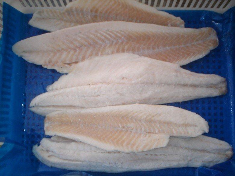 Catfish Fillet | Frozen Catfish Fillet Buy Catfish Fillet Catfish Seafood Product