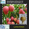 High Quality Pure Natural Lychee Seed Extract 10:1