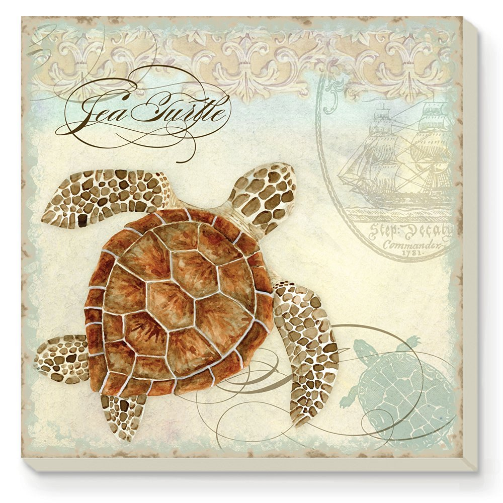 CounterArt Sea Turtle Absorbent Coasters, Set of 4