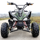 CE Approved 4 Wheel Quad Bike 48V 1000W Electric Quad ATV for Adults