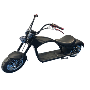 Citycoco Scooter 2000w 1500w Fat Tire Adult Electric Motorcycle with EEC