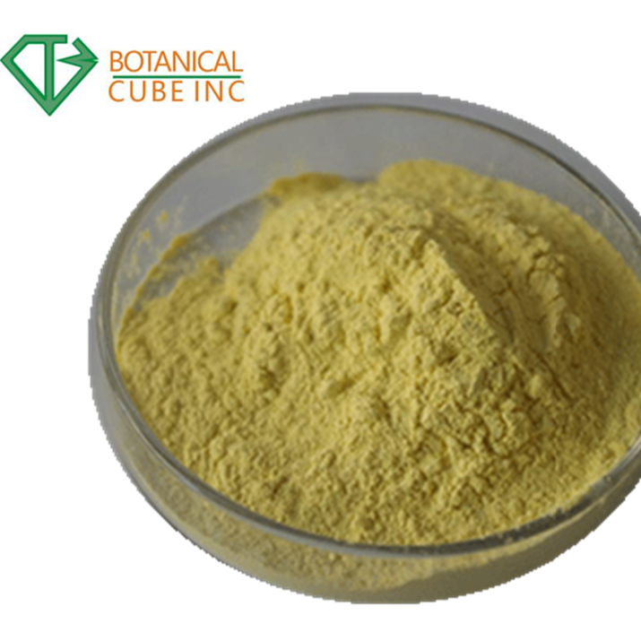 Ekstrak Jahe Gingerol Powder 5% HPLC Ekstrak Jahe Gingerol 5% 1391-73-7 Gingerol