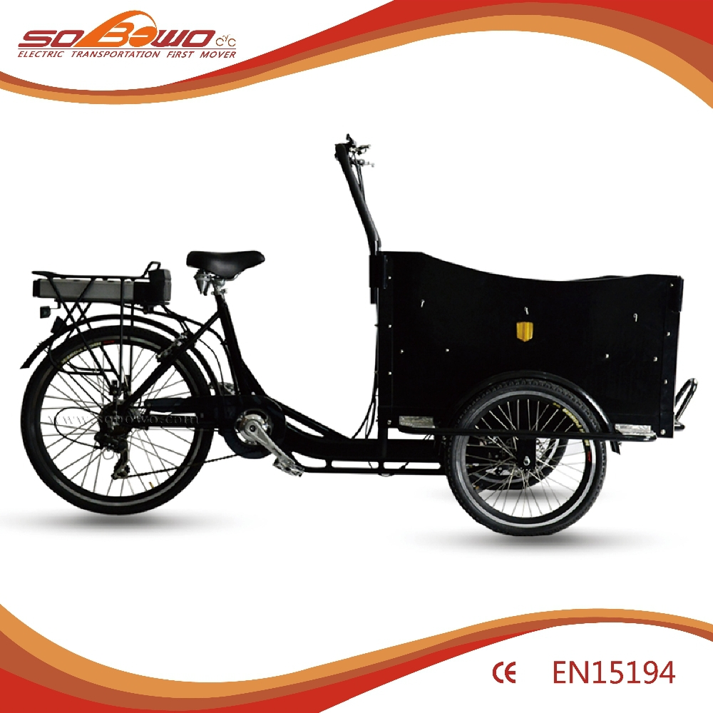 Adults Tricycles 29