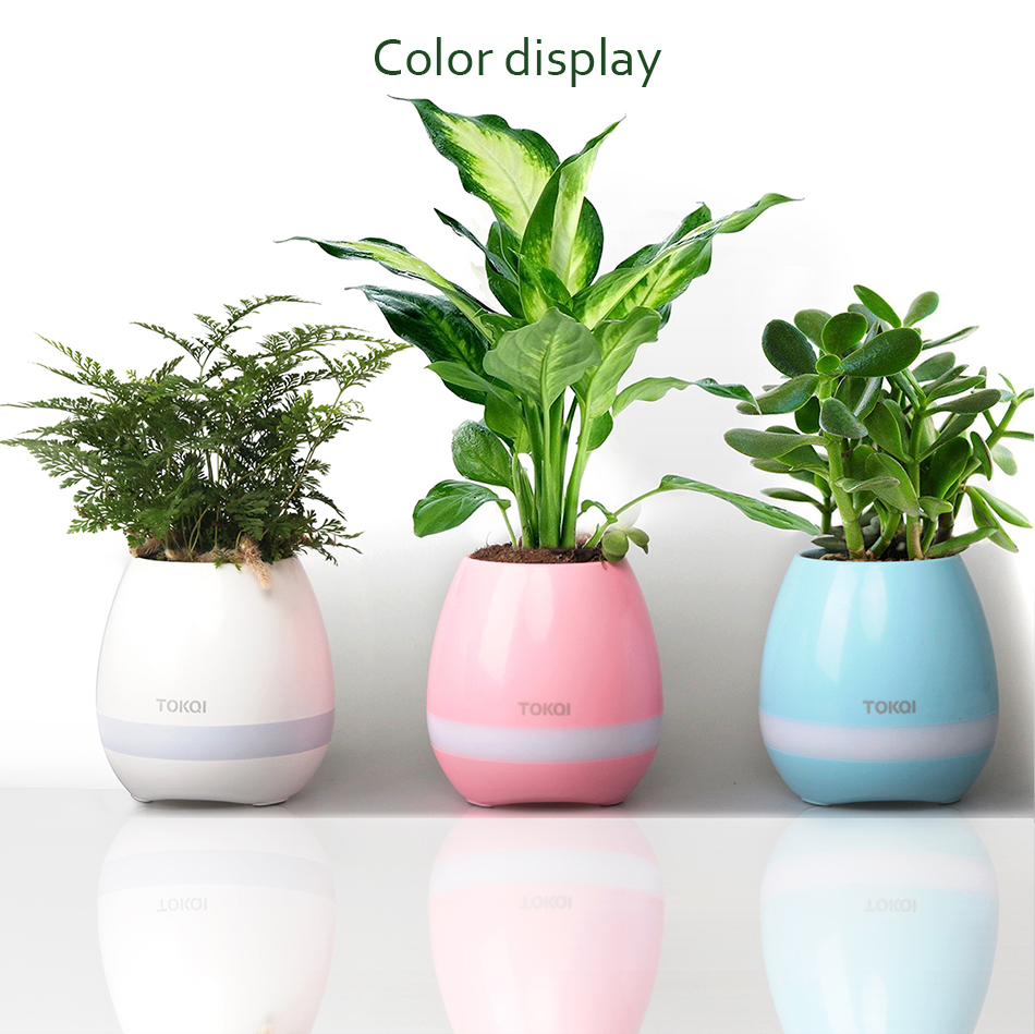 Smart Bluetooth Music Flowerpots Speaker With Light Finger Touch Plant Can Sing Several songs Stress Toy For Child