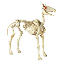 skeleton dog skeleton dog suppliers and manufacturers at alibabacom