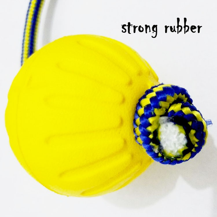 Natural Rubber Special for Dog Bitting Pet Products Dog Training Products Playing Ball Dog Agility Set