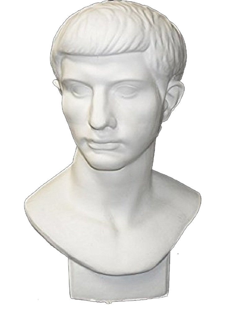 """Torino GES-102 Life Size Bust of Roman Youth Plaster Cast Mannequin, Great for Artists, Artistic piece, Color: White, Size: 9"""" X 11"""" X 18"""""""