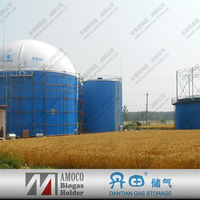 Chinese Customized Biogas Digester PVC Biogas Storage Cover for sale