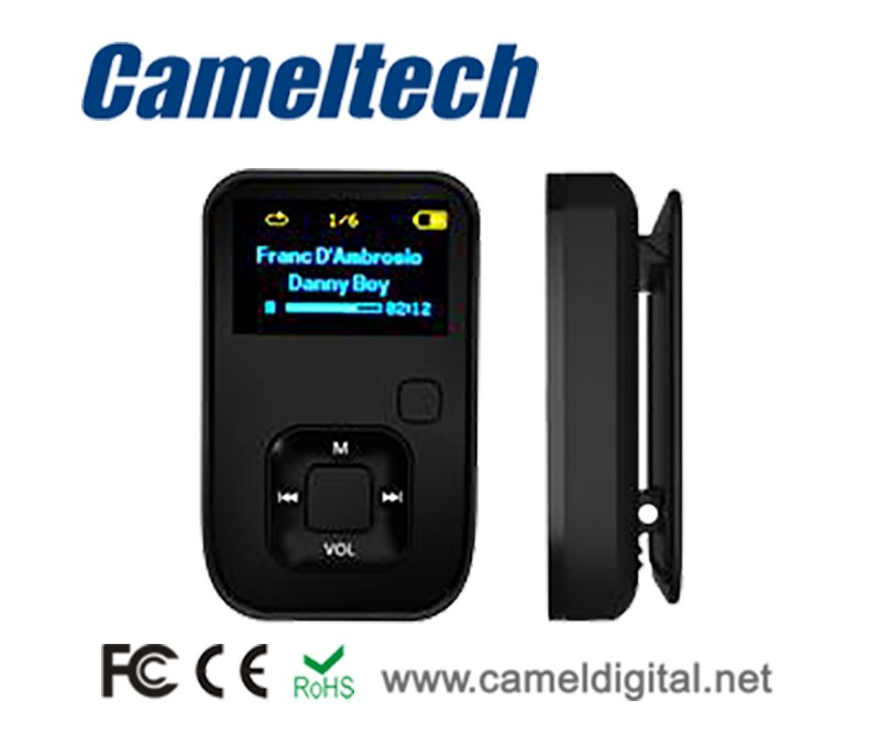 2017 OEM Factory Best Price Large Capacity MP3 MP4 Player, Download Song Video MP3 MP4 Player