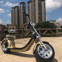 12 Inch standard version folding E bike 2 wheel electric scooter with cheap price made in china
