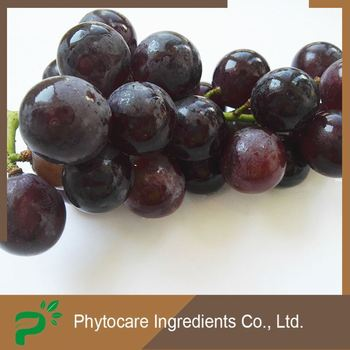 Reasonable pricing pure fresh resveratrol grape skin extract