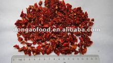 dried chilly 2012