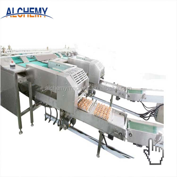 best price egg grading machine for sale