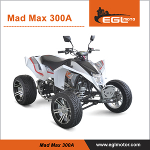 300cc street ATV Quad Bike